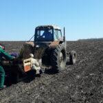 Працівники Гурівського лісництва завершили весняні лісопосадочні роботи