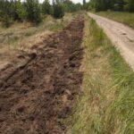 Працівники Петрівського лісництва підтримують мінсмуги у чистому стані