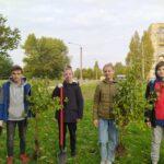 Учні Долинської ЗОШ № 4 провели озеленення території школи